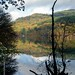 2017 Nov 04 - Loch Faskally reflections 5a