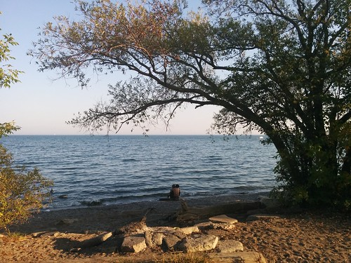 Couple on the shore #toronto #humberbayparkeast #humberbay #lakeontario #beaches #trees #couple #pebbles #stone #latergram