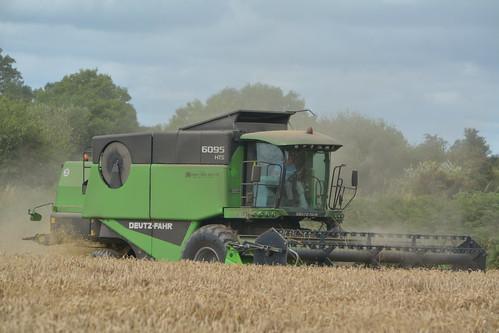 Deutz Fahr 6095 HTS Combine Harvester cutting Winter Wheat
