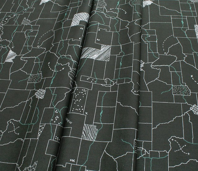 Art Gallery Fabrics Esoterra Dinotrails Night