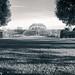 Kew -3816122017-Edit-2.jpg