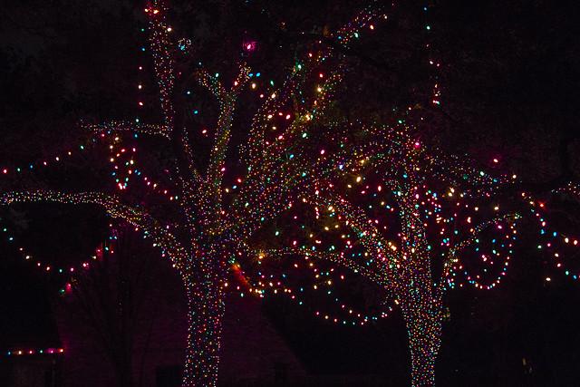 Christmas lights_19