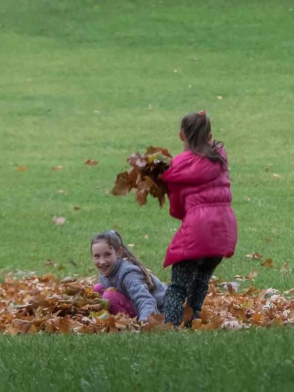 Bataille de feuilles mortes... 24333068608_03dfb9c606_c