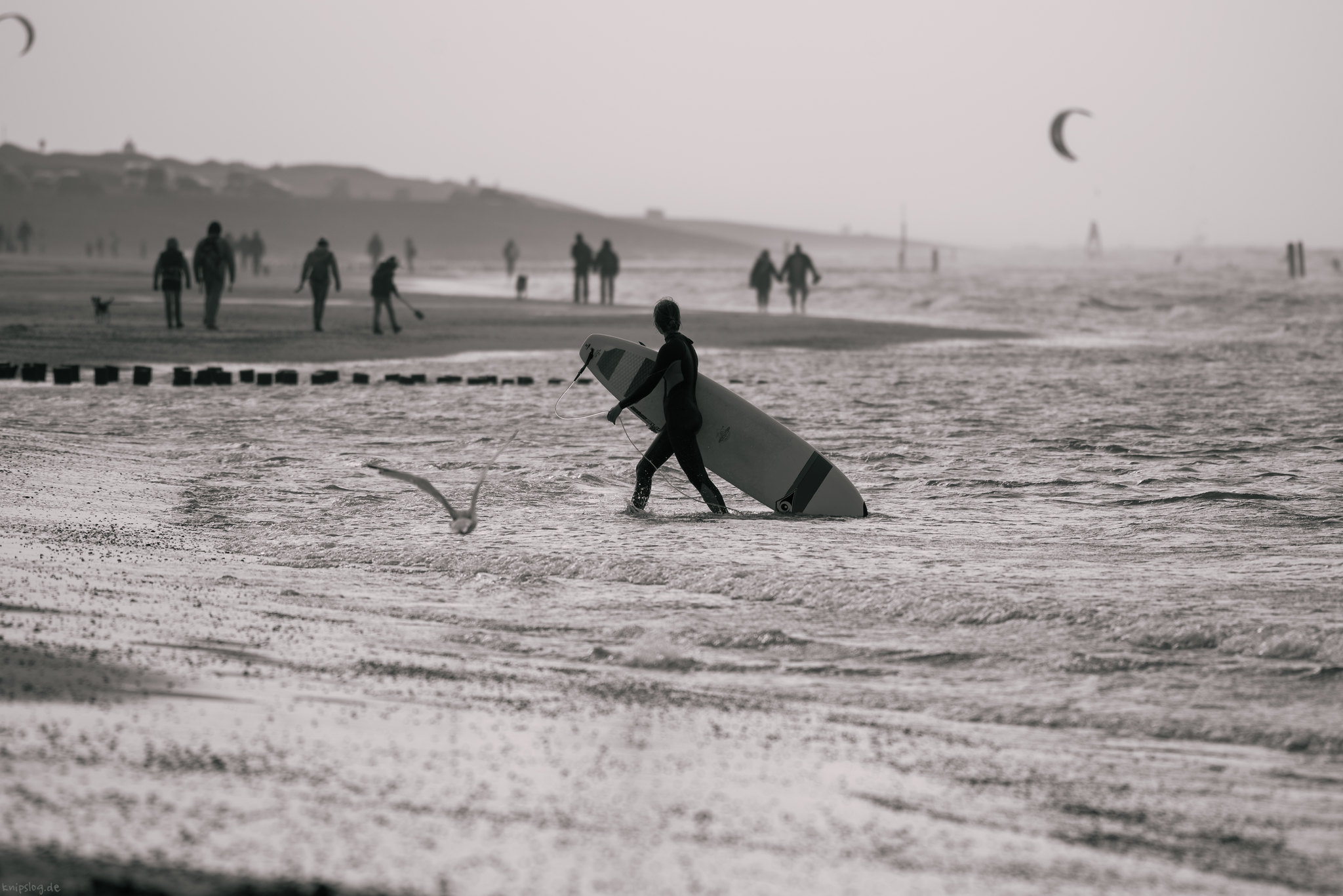 Using the time for surfing