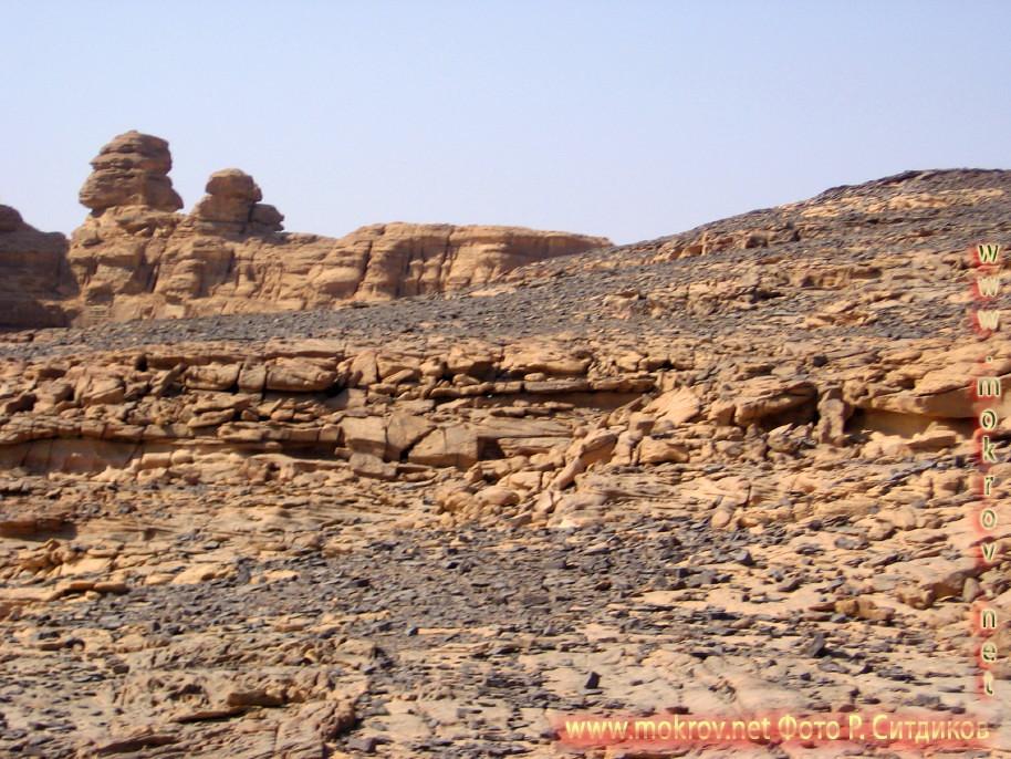 Синайская пустыня фото достопримечательностей