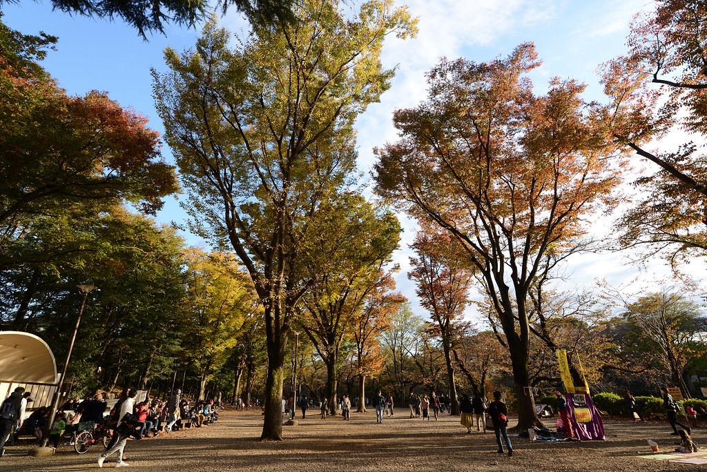 Inokashira Park 井の頭公園