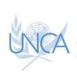 UNCA International Prize Logo