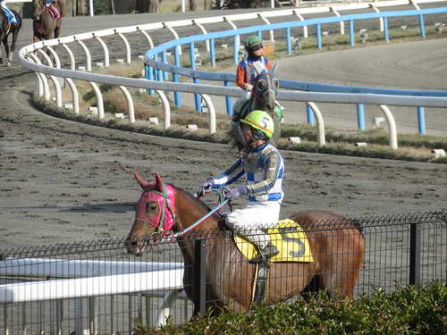 金沢競馬場のレースを終えた池田敦騎手