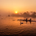 Misty sunrise with rowers