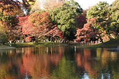 Autumn in Rikugi-en Garden