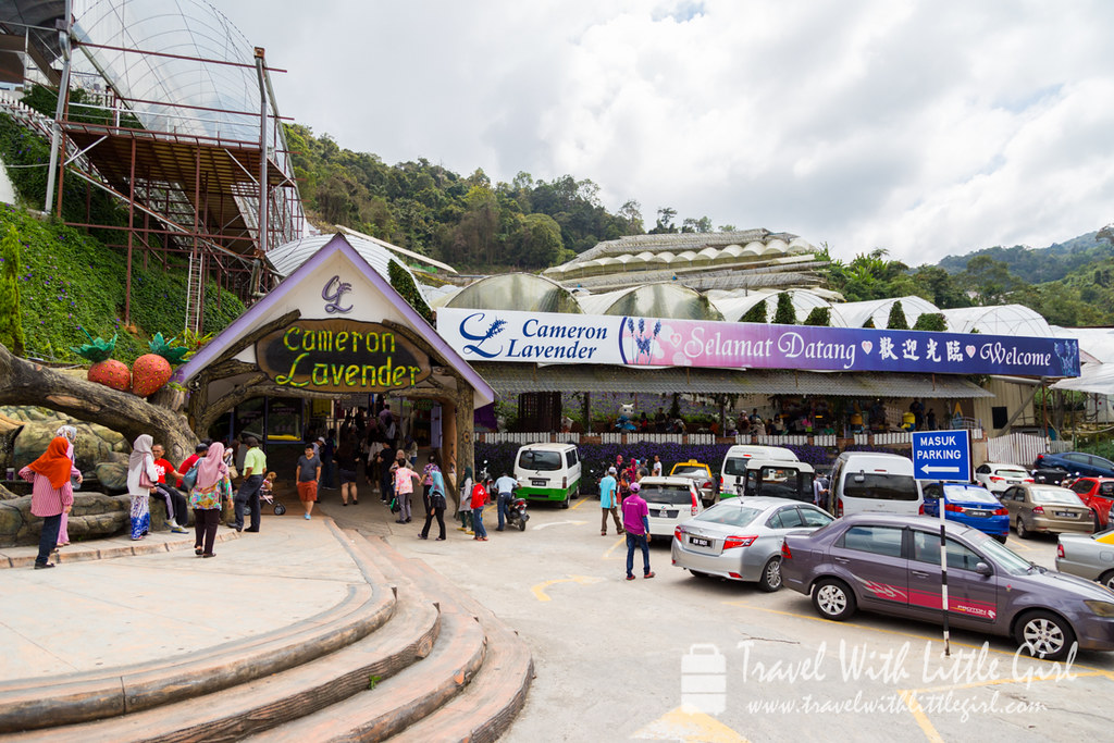 Entrance at Lavender Garden, Cameron Highlands