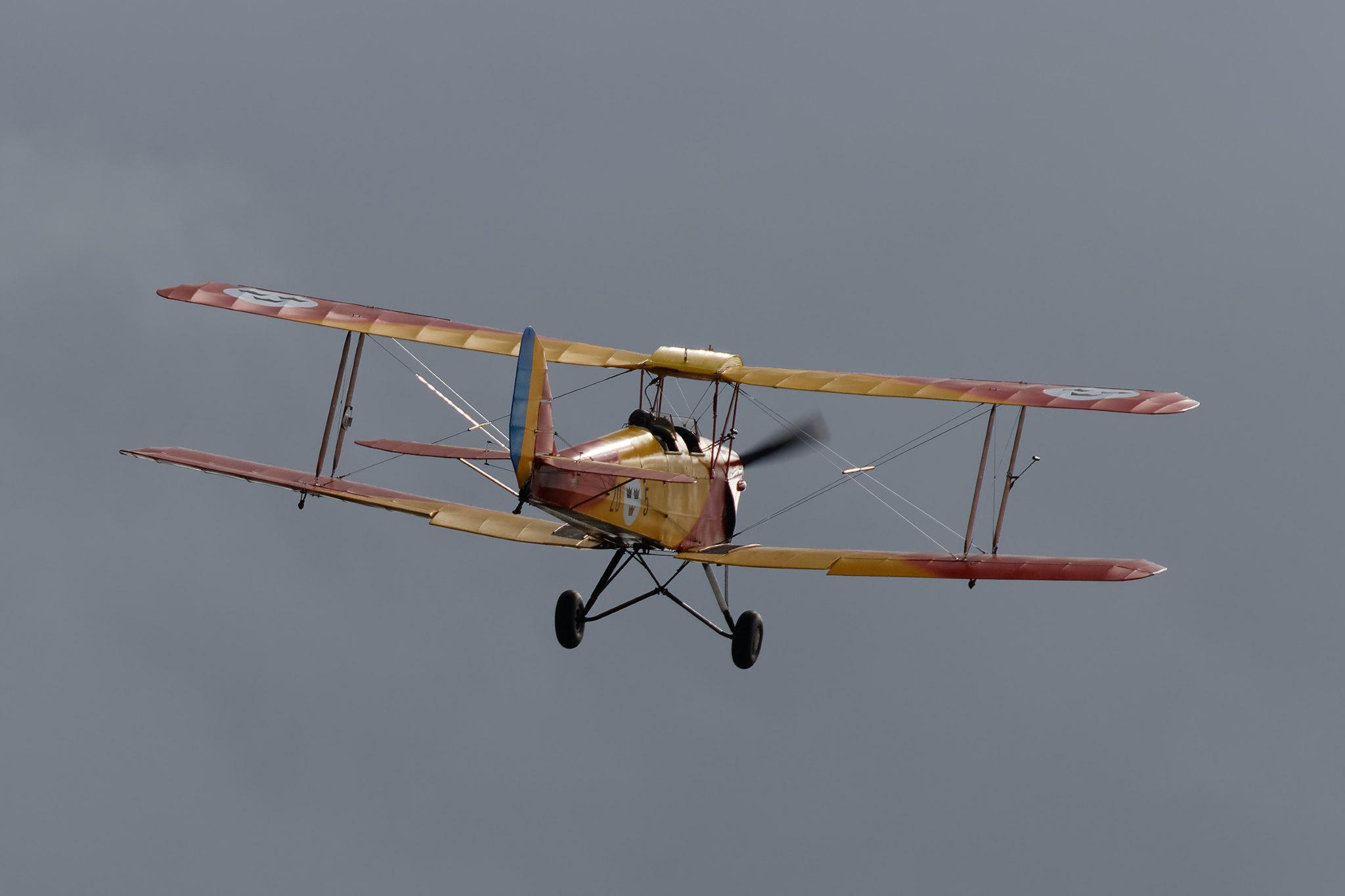 Tiger Moth 9