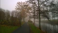 Dimma Mist Fog