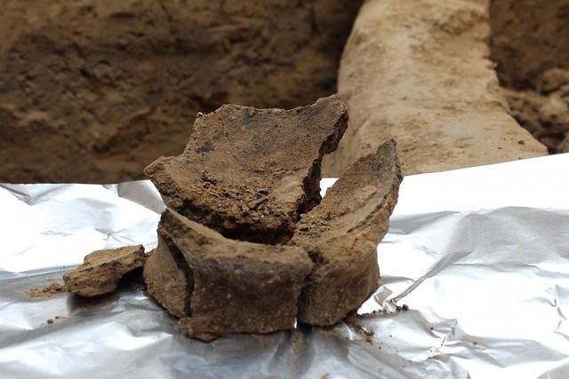 neolithicgeorgia
