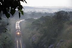 Train on a foggy morning