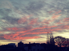 The Sky/ Sunset/ Sunrise