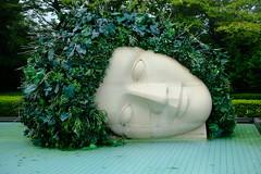 箱根 彫刻の森美術館 雕刻之森美術館