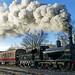 Frosty Morning Steam