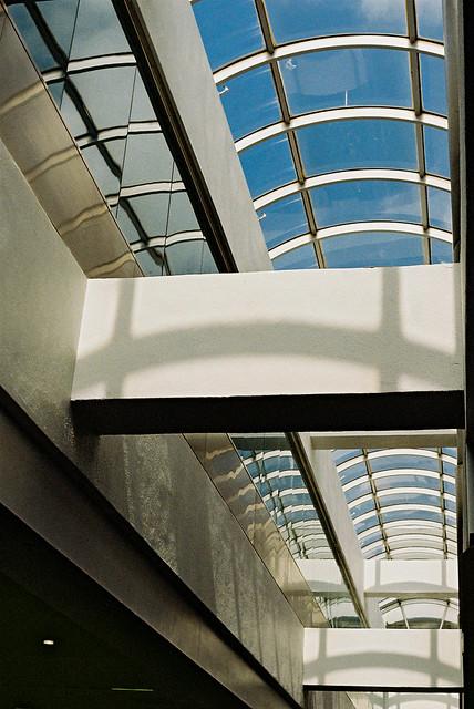 Sky Window | Nikon FE2 | Nikkor 50mm (f1.8)