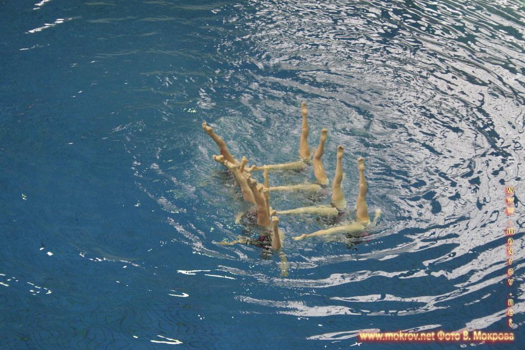 Сборная команда России по синхронному плаванию фотографии