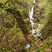 Stockghyll Force 1