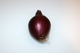 25 - Zutat Zwiebel / Ingredient onion