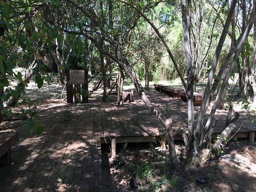 Parque Cuncumen de Los Llanos | Colbún | Quilaco