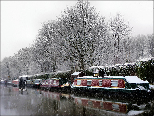 Winter on the canal.