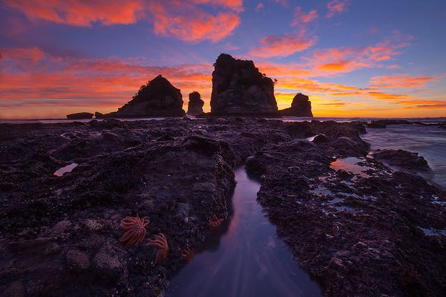 Motukiekie Beach - West Coast, New Zealand.
