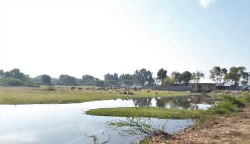 i-Bundi-Pushkar-route (9)