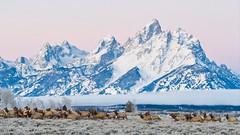 Grand Teton Dec 2017