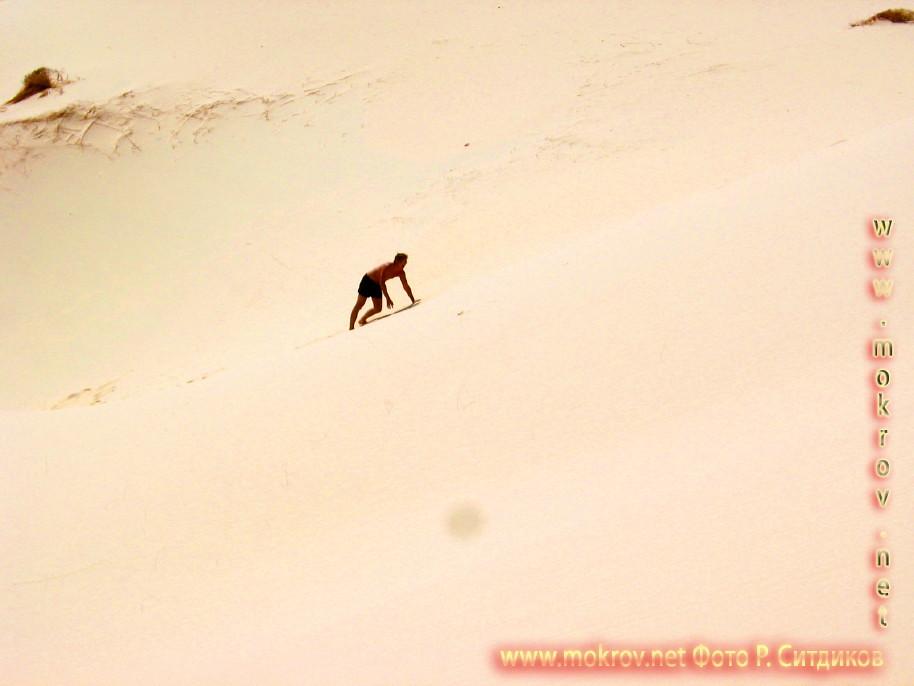 Синайская пустыня на Майне прогулки туристов с фотокамерой
