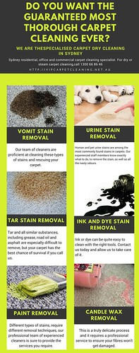 Do you want the Guaranteed most thorough carpet cleaning ever