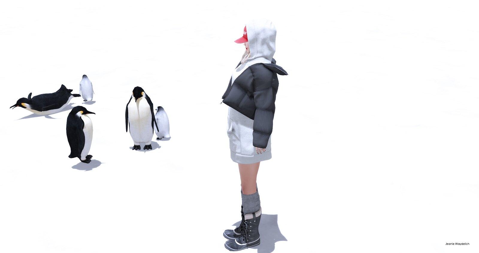 LOTD 895 - Penguins *-*