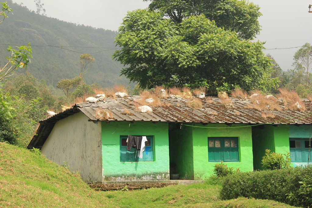 Village houses, hiking in Kerala