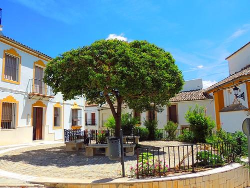 <Rincones>  El Saucedo (Sevilla)