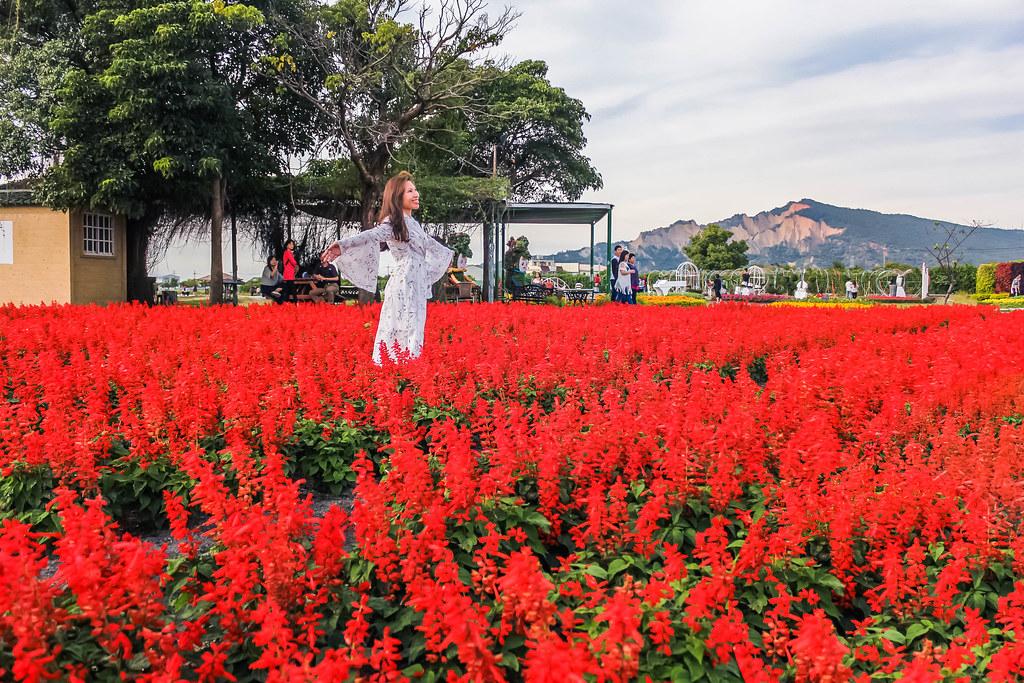 zhong-she-guan-guang-flower-market-taichung-alexisjetsets