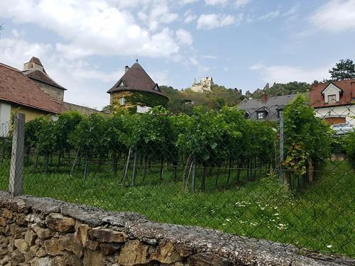 ワインと古城