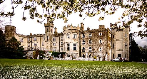 Cabra Castle Ireland-5