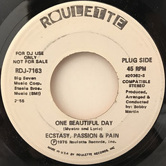 ECSTASY, PASSION & PAIN:ONE BEAUTIFUL DAY(LABEL SIDE-B)