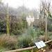Aviary; starlings, weavers