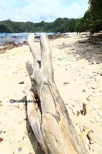 pantai wediombo guungkidul yogyakarta