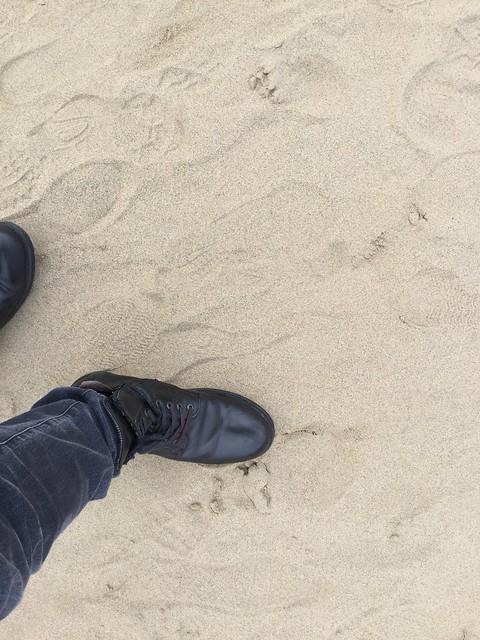 鳥取砂丘への第一歩