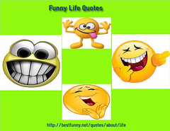 Ultimate Collection Of Funny Life Quotes