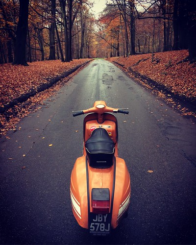 Autumn ride