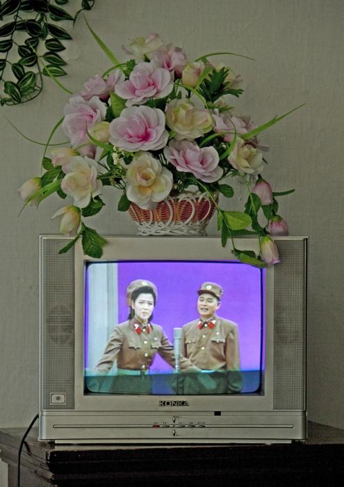 FLEURS SUR UNE TELEVISION, COREE DU NORD