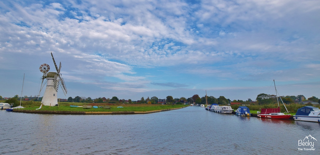 Potter Heigham to Ranworth boat trip (178) (1280x620)
