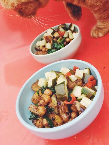 food at home, october - november 2017 (årstiderna organic, vegan food box, food ambassador) -