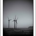Marr Wind Farm 7428.