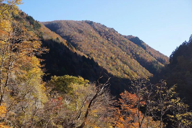 富山県道54号福光上平線を行く! その2 大崩落地まで